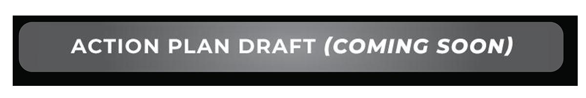 Action Plan Draft