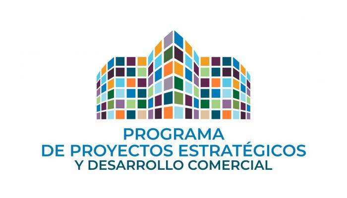 Programa de Proyectos Estratégicos y Desarrollo Comercial **** Consolidado bajo la Cartera de Inversión en Desarrollo Económico